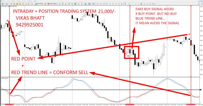 Position Trader คืออะไร